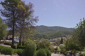 Sierra de Grazalema y el Bosque