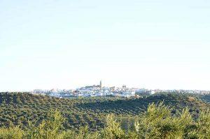 El pueblo de Porcuna visto desde lejos