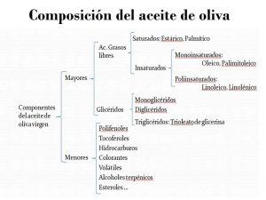 esquema de la composición del aceite de oliva virgen extra