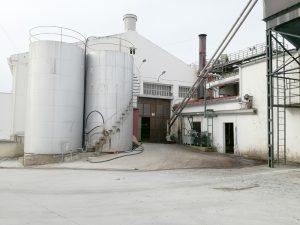 Cooperativa de aceite de oliva de Jaén