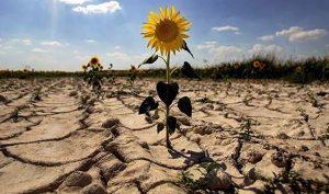 nuevas amenazas, el cambio climático