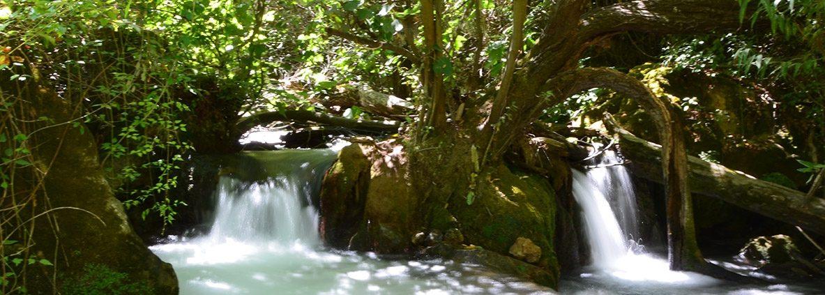 rio de la Sierra de Grazalema