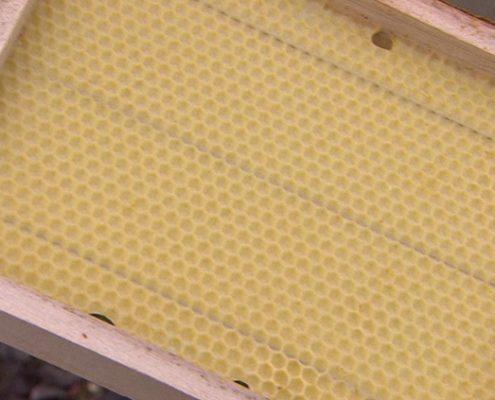 panal de cera de abeja
