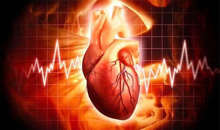 cuidado de nuestro corazón