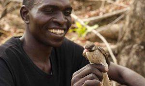 Mutualismos entre el hombre y la naturaleza, cuidar la naturaleza