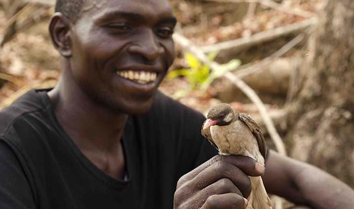 Mutualismos entre el hombre y la naturaleza