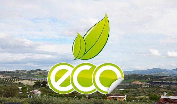 sustainability in the olive fields of Jaén