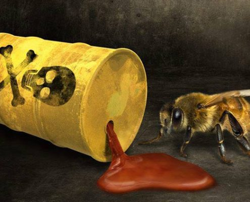 matando a las abejas