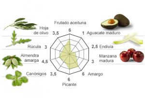 Aromas del Cornicabra de Casas de Hualdo