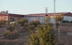 Cooperativa la Purísima de Priego de Córdoba