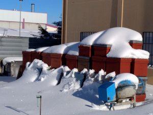 Colmenas con nieve en Brihuega